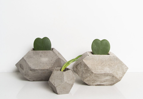 PLANTS-CONCRETE JUNGLE CONCRETE POTS