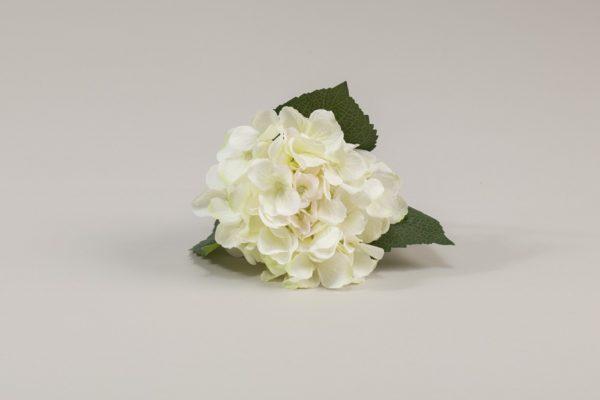 hydrangea-cream