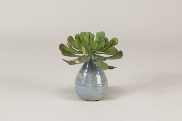 SUCCULENT VOTIVE-WILD WOOD LONDON