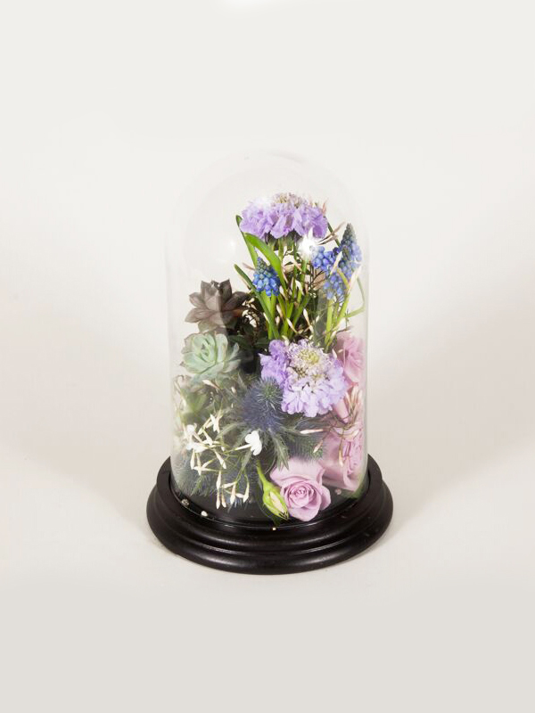 Flower Dome Masterclass Example