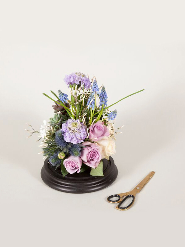 Flower Dome Masterclass Photo